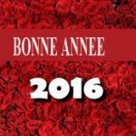 bonne-annee-3