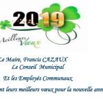 carte-de-voeux--2019