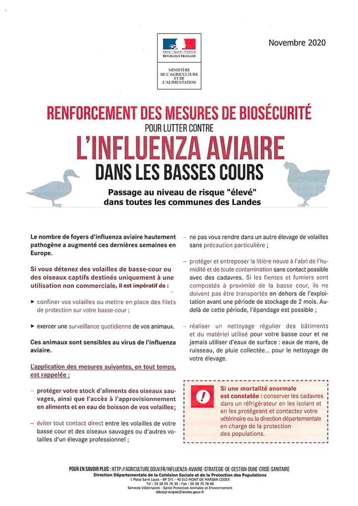 courrier-aux-maires,-grippe-aviaire,-risque-élevé-3